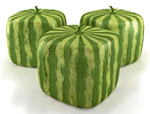 Viereckige Melonen